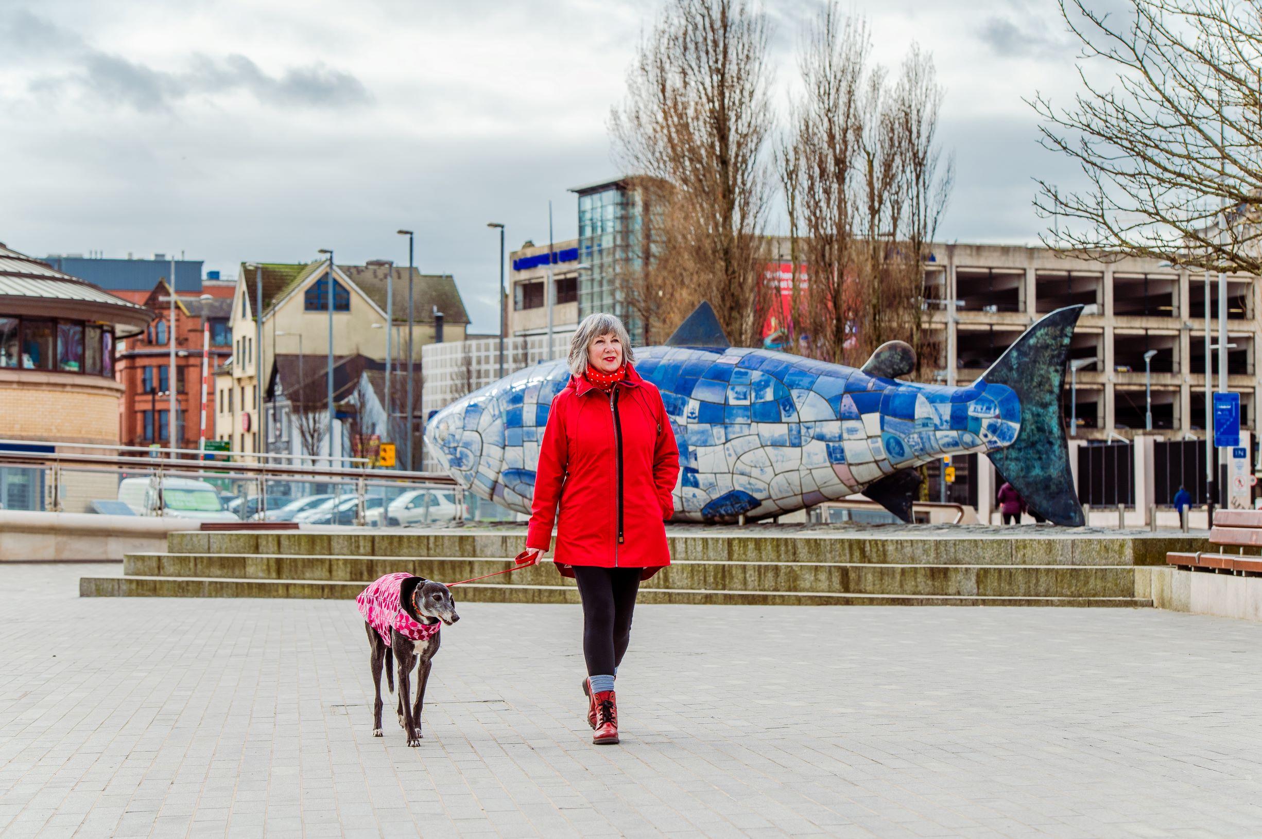 Hello Maritime Mile Dog Walking Belfast